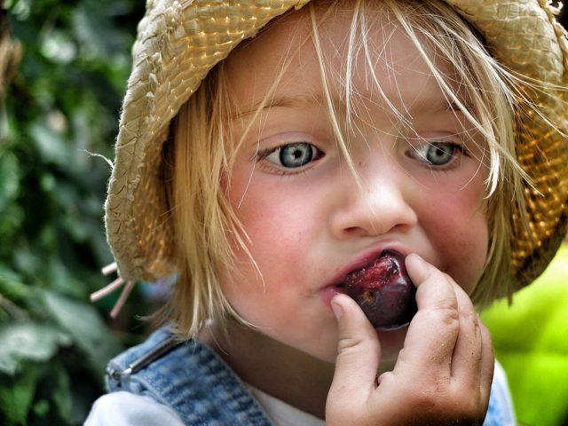 lijst met buitenactiviteiten met kinderen in vakantie