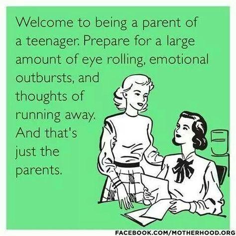 moeilijke puber opvoeden, herkenbaar?