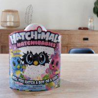 Hatchimals Hatchibabies